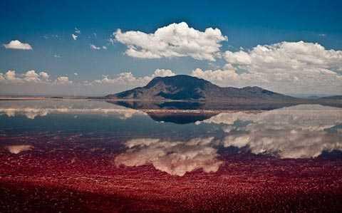 Mặt nước hồ Natro có màu đỏ tươi do một loại vi khuẩn phát triển mạnh, tạo nên khung cảnh rất ấn tượng