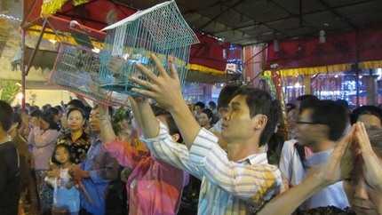 Nghi thức mua và thả chim phóng sinh đầu năm cầu an (Ảnh: N.D)
