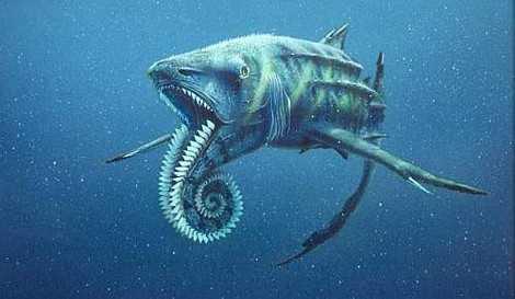 Một giả thuyết trước đây về vị trí hàm răng của con cá mập