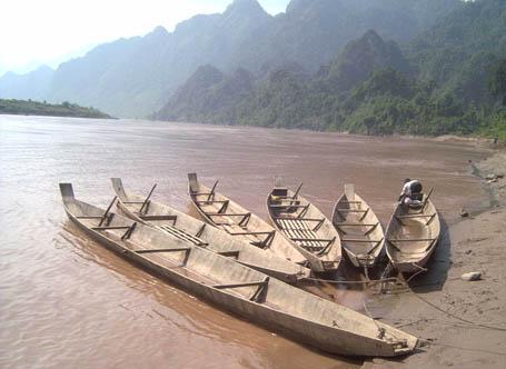 Sông Gâm đoạn chảy qua Cao Bằng có loài cá chiên khổng lồ, mà người dân gọi là
