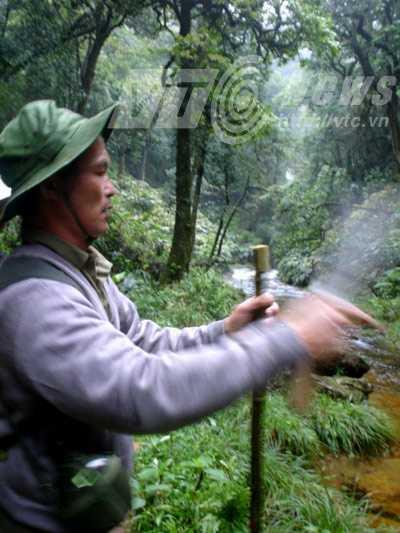 Mỗi chuyến đi rừng tìm thuốc của ông Lâm kéo dài cả tháng trời