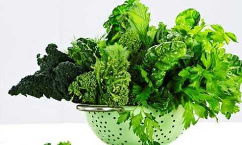 Các loại cải lá gây ngộ độc là do chúng bị nhiễm khuẩn, nhiễm hóa chất trong quá trình trồng, chăm sóc