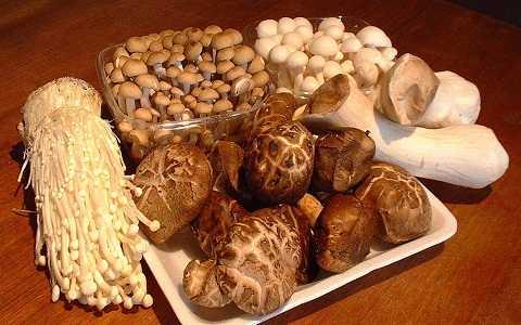 Khi đun lại, các protein và hàm lượng dinh dưỡng trong nấm sẽ biến thành chất độc có hại cho dạ dày