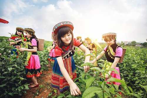 Hưởng ứng trào lưu, các cô gái, chàng trai lớp 12A, trường THPT Nguyễn Huệ (Tam Điệp, Ninh Bình) cũng vừa cho ra mắt bộ kỷ yếu rất độc đáo và mới lạ.