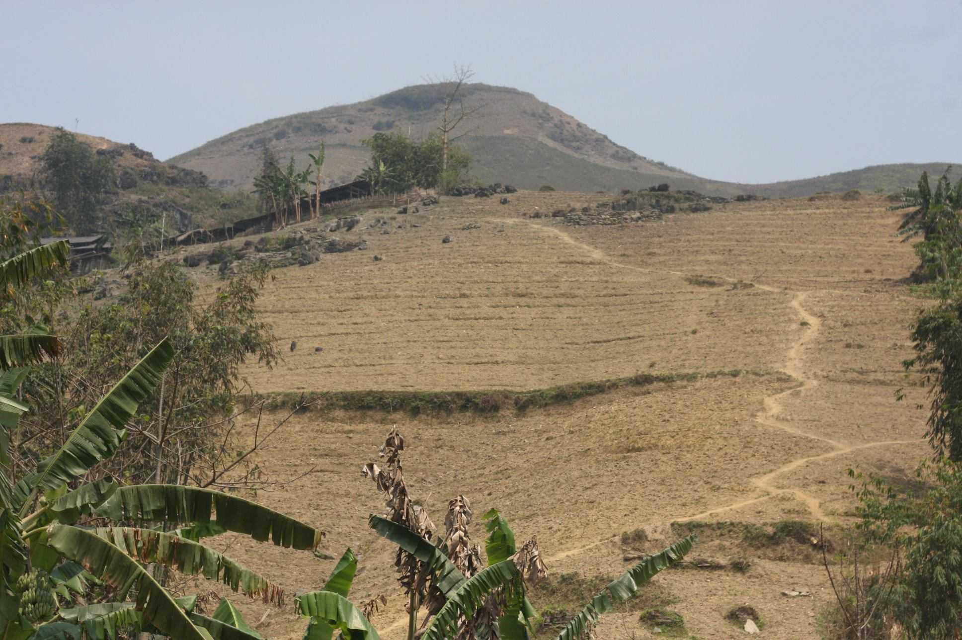 Nhà Lúa nằm gần như cao nhất bản, khuất sau quả đồi, trên một con dốc dựng đứng.