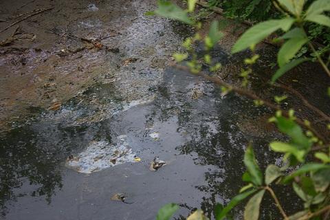 Tại một số điểm trên con mương dẫn nước thải ra sông Bưởi, nhiều nơi nước đã cạn nhưng vẫn để lại mùi hôi thối nồng nặc, kèm theo lớp váng bám vào đất bùn. Một chỗ khác, nước không thoát được đọng thành vũng đen ngòm, mùi hôi thối cũng bốc lên nồng nặc và mặt nước có nổi lớp váng màu vàng đậm.