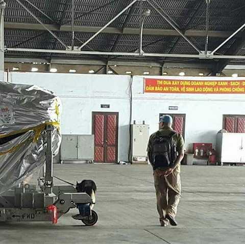 Trang thiết bị cùng nhân viên kỹ thuật Mỹ đã đến Việt Nam trên những chuyến bay đầu tiên để phục vụ chuyến thăm của Tổng thống Mỹ Barack Obama