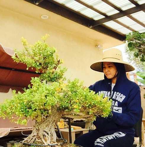 Bằng Kiều đăng ảnh bạn gái Dương Mỹ Linh đang cùng anh chăm sóc vườn bonsai.Nam ca sĩ hạnh phúc khoe với người hâm mộ: