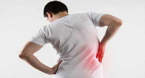 Gan là nội tạng tiếp xúc nhiều với chất độc nhất trong cơ thể