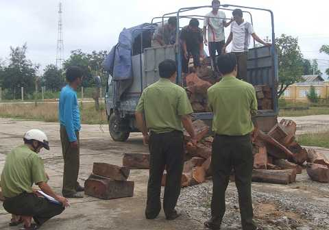 Cán bộ kiểm lâm ngó lơ việc doanh nghiệp kinh doanh gỗ lậu (Ảnh minh họa)
