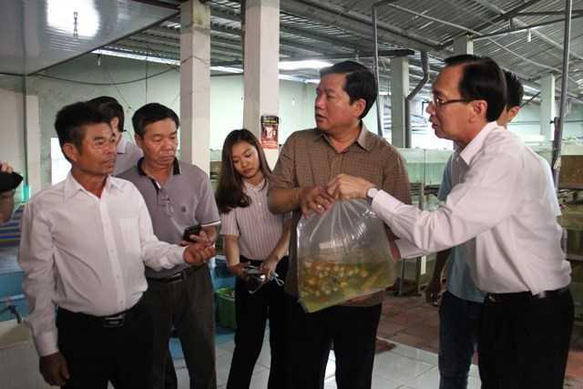 Bí thư Đinh La Thăng đi thăm cơ sở sản xuất cả kiểng xuất khẩu. Ảnh: Phan Tư