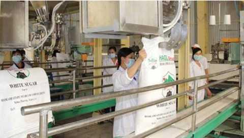 Sản phẩm mía đường Hoàng Anh Gia Lai có giá rẻ hơn giá mía đường trong nước - ảnh nguồn: Tập đoàn Hoàng Anh Gia Lai
