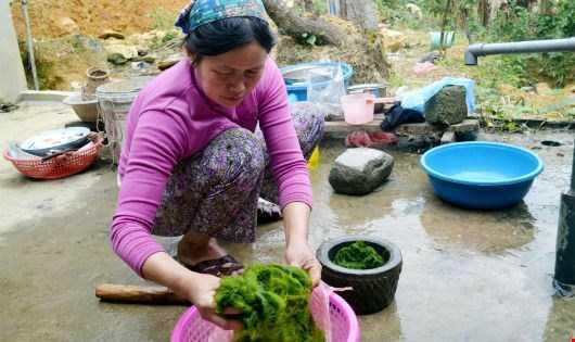 C Chị Mến chế biến đặc sản rêu đá