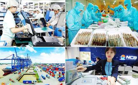 Nền kinh tế Việt Nam chưa thoát đáy
