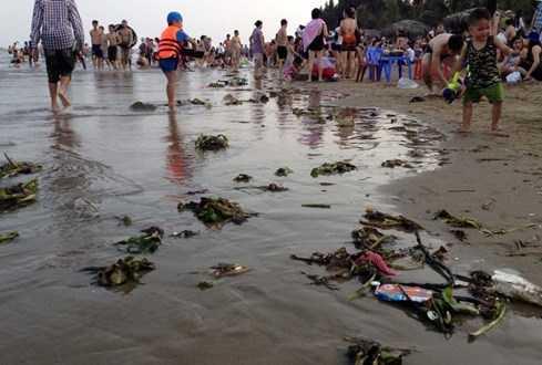 Hải Tiến (Thanh Hóa) và nhiều bãi biển khác cũng ngập tràn rác.