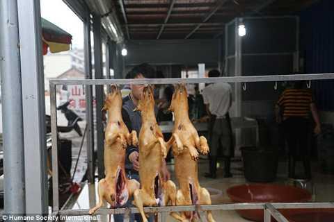 Một gian hàng bày bán thịt chó nguyên con ở chợ Ngọc Lâm.