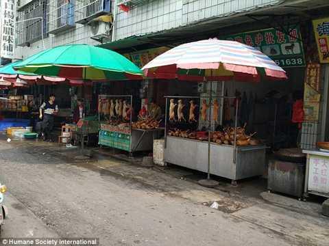 Các gian hàng bày bán thịt chó mèo nằm san sát tại chợ.