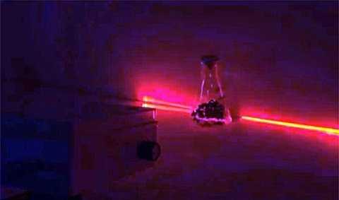 Ánh sáng laser đã được sử dụng để kích thích tăng trưởng ở một số loại cây trồng. Ảnh Dailymail