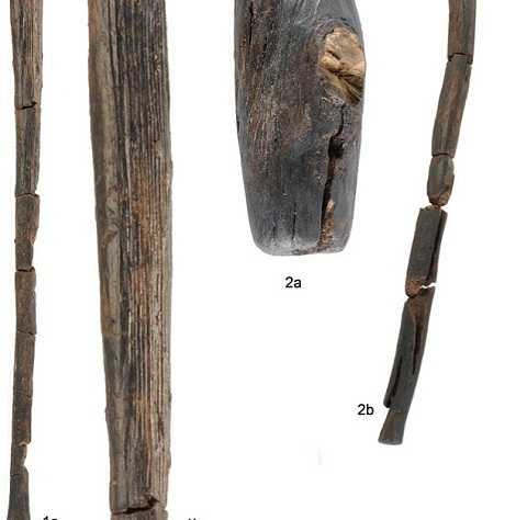 Nhiều dùi cui và vồ bằng gỗ đã được tìm thấy. Ảnh Dailymail