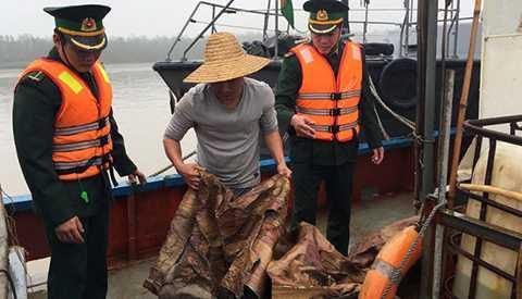 Cán bộ biên phòng của Việt Nam kiểm tra số lượng dầu không rõ nguồn gốc trên tàu của Trung Quốc - Nguồn ảnh: Tuổi trẻ