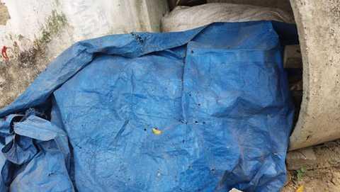 Các bao tải chứa măng cũng được vứt ở một góc ngoài trời.