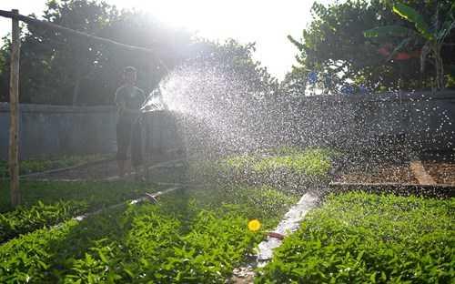 Thời tiết ở Trường Sa cơ bản có hai mùa mưa và mùa   khô. Mùa khô từ tháng 2-4; mùa mưa từ tháng 5 đến tháng 1 năm sau. Nhiệt   độ trung bình hàng năm từ 26-30 độ C. Độ ẩm cao, cao nhất lên tới 97%,   mang theo nhiều hơi sương muối. Mỗi năm ở đây có tới hơn 130 ngày có gió   mạnh từ cấp 6 trở lên.