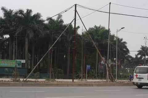 Cây cột điện hoen gỉ được chống đỡ bằng những cây tre mốc meo.