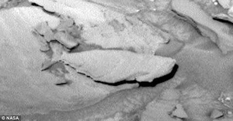 Nhiều ý kiến cho rằng, chắc hẳn con   cá này sinh sống trong một đại dương cổ đại tồn tại ngay trên bề mặt   hành tinh đỏ. Nguồn ảnh: Dailymail.