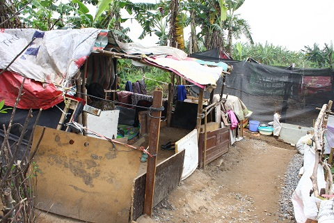 Hơn 30 năm qua bà sống trong túp lều lụp xụp, rách nát, chỉ một trận gió lớn túp lều này sẽ bị xô đổ