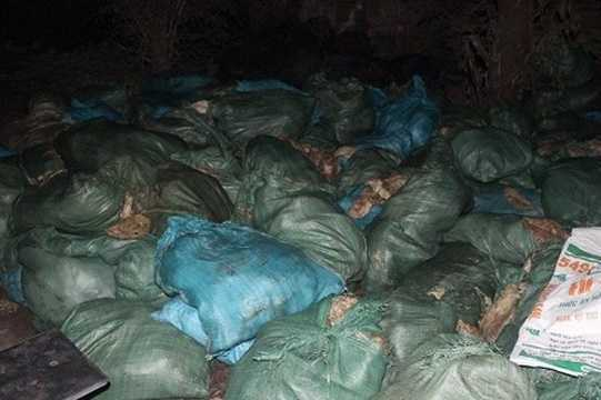 Năm 2015, cơ quan chức năng vừa bắt giữ gần 5 tấn mỡ bẩn không rõ nguồn gốc tại một cơ sở ở Phú Xuyên (Hà Nội). Tại thời điểm kiểm tra, lực lượng chức năng phát hiện gần 5 tấn mỡ lợn bị bốc mùi, hôi thối này đang được chế biến thành dầu ăn. Ảnh: Tiền Phong.