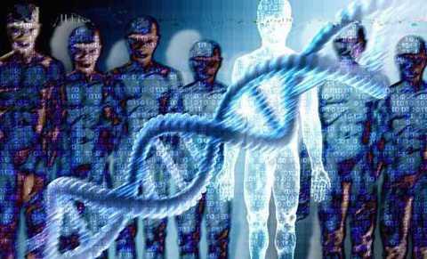 Trải qua hàng trăm triệu năm, cơ thể chúng ta đã hoàn toàn thích nghi với những mã gen ngoại lai đó. (Theo Viral Nova)