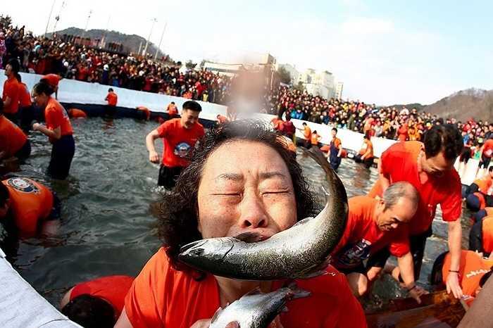Du khách tham gia bắt cá bằng miệng ở lễ hội băng Hwacheon-gun, Hàn Quốc