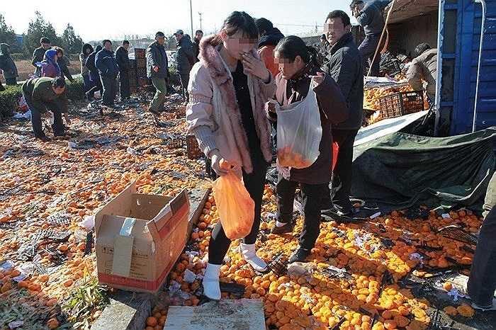 Ở Trung Quốc cũng có nạn hôi của giống như Việt Nam và một số nước khác