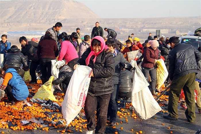 Nhiều người ùn ùn kéo đến nhặt quýt sau khi chiếc xe tải chở quýt lật ngửa trên đường cao tốc ở thành phố Lan Châu