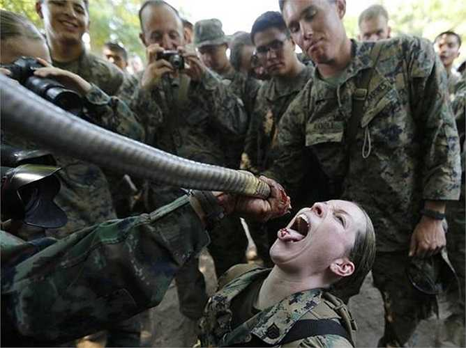 Trong một cuộc tập trận chung Mỹ -Thái Lan, các binh sỹ Mỹ phải trải qua bài huấn luyện học cách sống sót trong rừng già Thái Lan bằng cách uống máu rắn