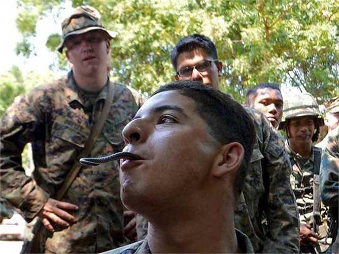Bài tập uống huyết rắn để sinh tồn trong rừng già Thái Lan của các binh sỹ Mỹ