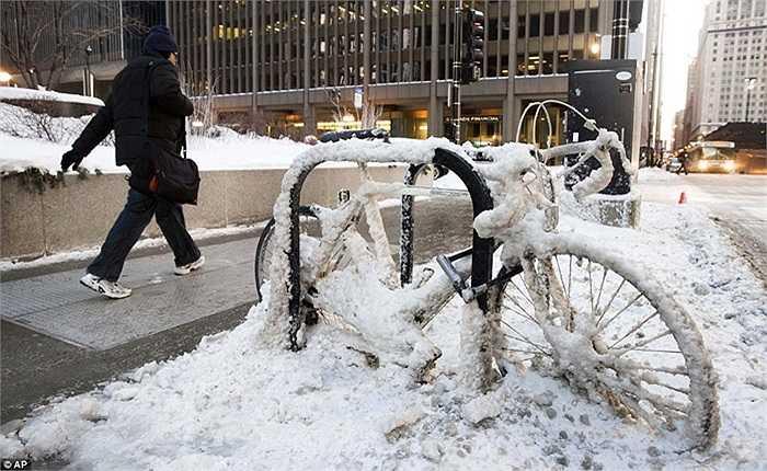 Chiếc xe đạp bị hóa băng trên đường phố Chicago