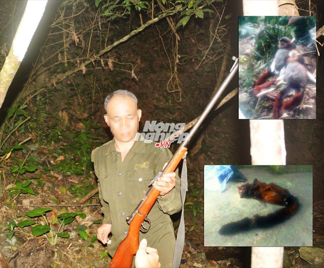 Thợ săn Hồ Văn R. và những con thú anh ta bắn hạ