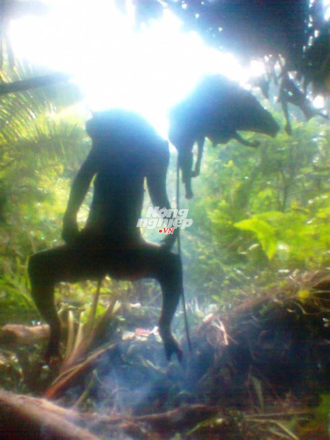 Những con voọc bị thui ngay tại rừng
