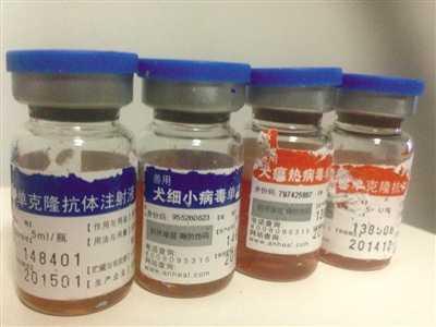 Loại huyết thanh được dùng để tiêm cho các chú chó bệnh nặng.