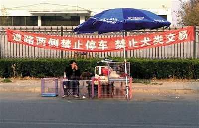 Mua bán cún cưng ngay trên đường phố Bắc Kinh.