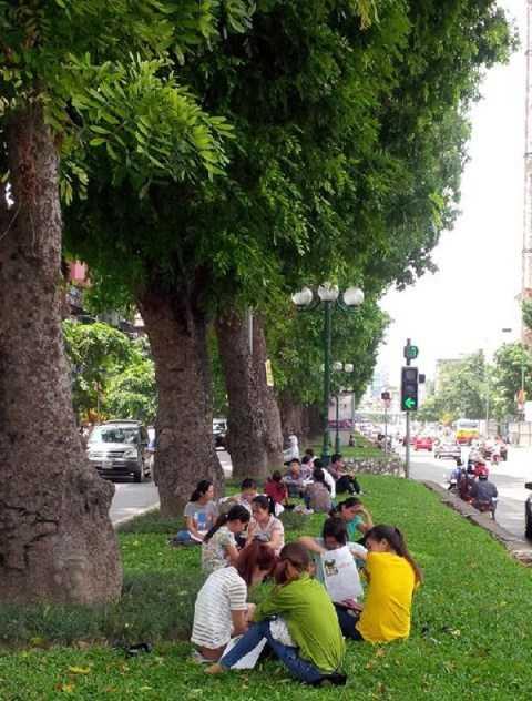 Do khoảng trống trước cửa Cục Thuế Hà Nội có giới hạn nên nhiều người đến sau đã phải sang phía bãi cỏ giữa đường để ngồi chờ. (Ảnh: Xuân Phú)