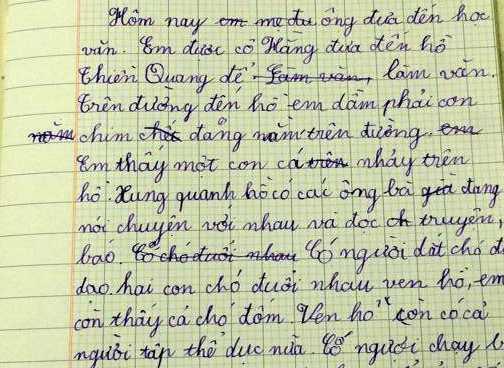 Bài văn của bé Gia Huy.