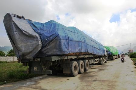 Các phương tiện chở gỗ quá tải đều được phủ kín bạt