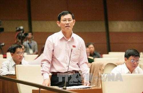 Đại biểu Quốc hội tỉnh Quảng Bình Nguyễn Ngọc Phương phát biểu ý kiến. Ảnh:TTXVN.