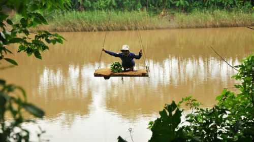 Người dân ở thôn Mai Châu, xã Đại Mạch, huyện Đông Anh, Hà Nội đu dây qua sông. Ảnh: Tuổi Trẻ