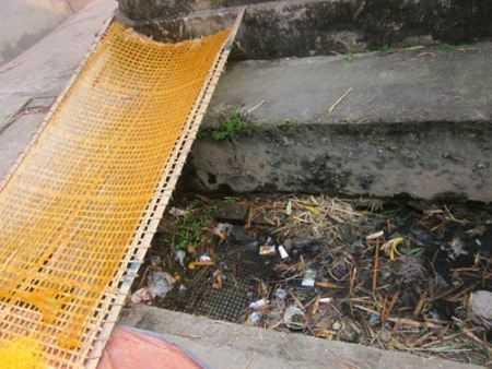 Phên miến phơi cạnh cống rãnh rất ô nhiễm