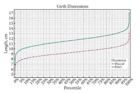 Biểu đồ trên cho thấy chu vi trung bình dương vật của nam giới - theo cm - trong mỗi phần trăm.