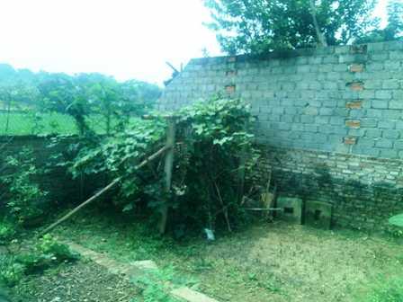 Khu vực tường rào phía sau được nhận định là nơi hung thủ tẩu thoát.