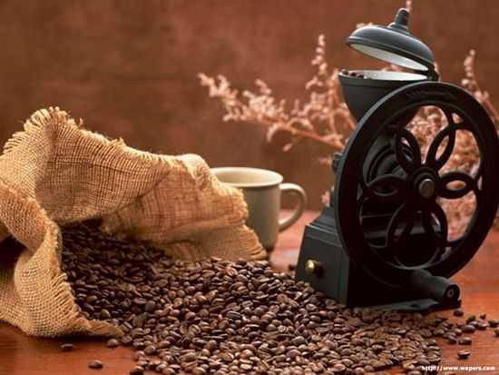 Cà phê có tác dụng hút mùi rất tốt đồng thời có mùi thơm tuyệt vời.